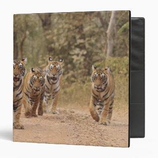 Royal Bengal Tigers on the track, Ranthambhor 6 Binder