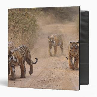Royal Bengal Tigers on the track, Ranthambhor 7 3 Ring Binder