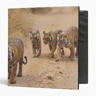 Royal Bengal Tigers on the track, Ranthambhor 8 3 Ring Binder