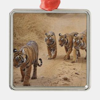 Royal Bengal Tigers on the track, Ranthambhor 8 Metal Ornament