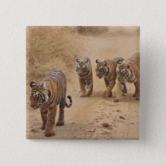 Royal Bengal Tigers on the track, Ranthambhor 8 Pinback Button