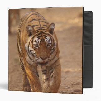 Royal Bengal Tigers on the track, Ranthambhor Binder