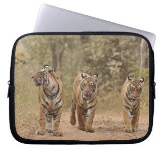 Royal Bengal Tigers on the track, Ranthambhor Laptop Sleeve