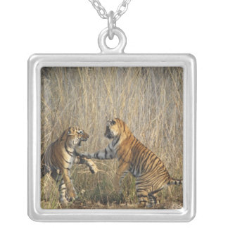 Royal Bengal Tigers play-fighting, Ranthambhor Silver Plated Necklace