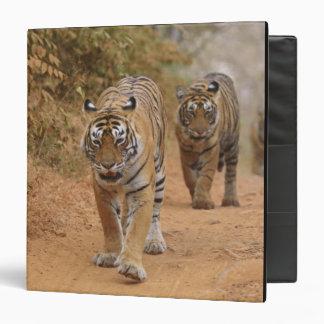 Royal Bengal Tigers walking along the track, Binder