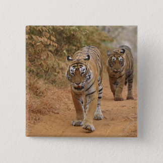 Royal Bengal Tigers walking along the track, Button