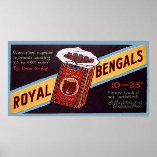 Royal Bengals Poster
