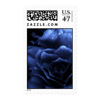 Royal Blue Close Up of a Double Begonia Postage