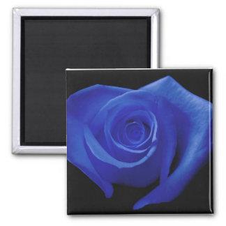 Royal Blue Heart-Shaped Rose Magnet
