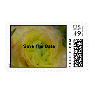 Royal Blush Postage Stamps