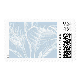 Royal Botanica B by Ceci New York Postage