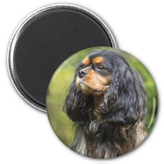 Royal Cavalier King Charles Spaniel 2 Inch Round Magnet