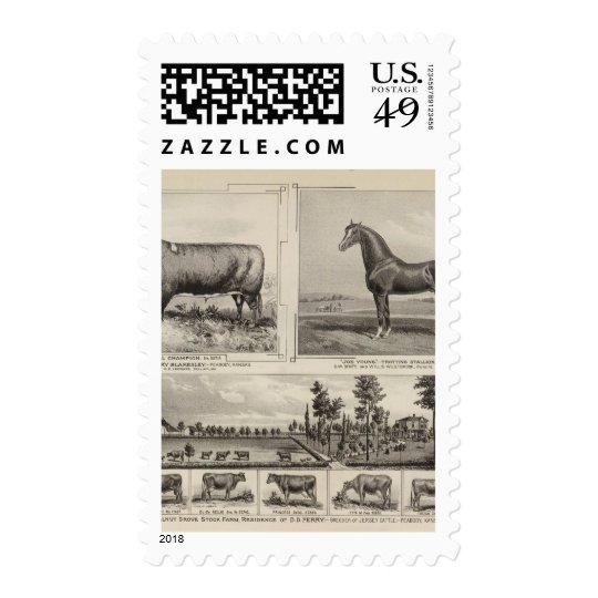 Royal Champion, Joe Young, Kansas Postage