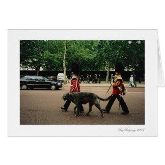 Royal Dog Walkers Card