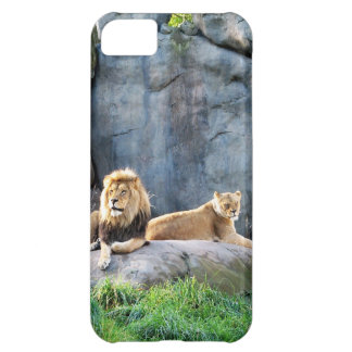 Royal Family Case For iPhone 5C