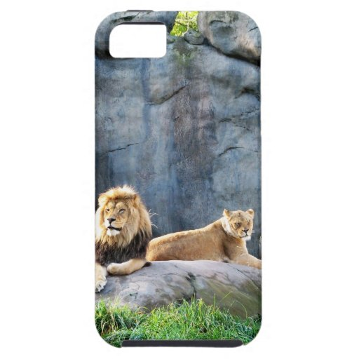 Royal Family iPhone 5 Cases