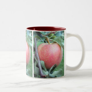 Royal Gala Apple Two-Tone Coffee Mug