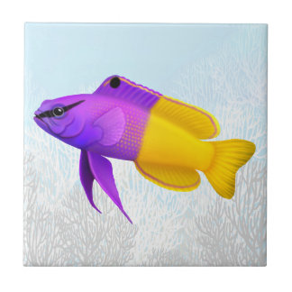 Royal Gramma Coral Reef Fish Tile