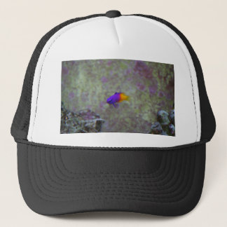 Royal Gramma Trucker Hat