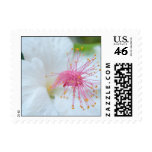 Royal Hawaiian Hibiscus Stamp