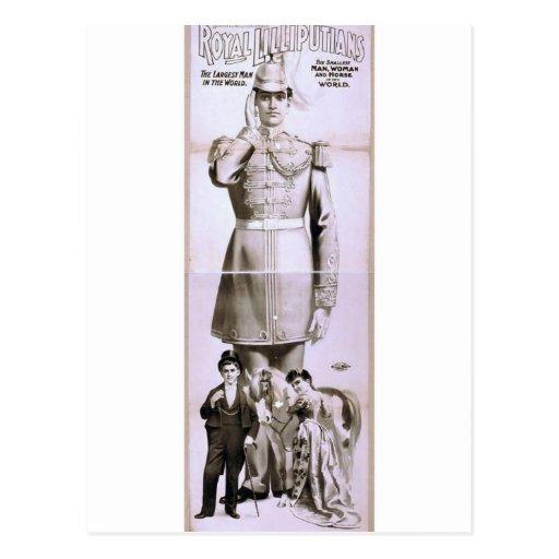 Royal Lilliputians Retro Theater Postcard