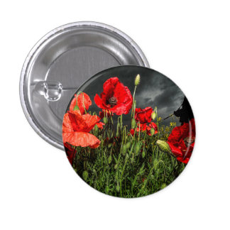 Royal Marine Remembers Button