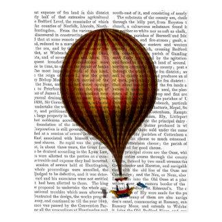 Royal Nassau Balloon Hot Air Balloon Postcard