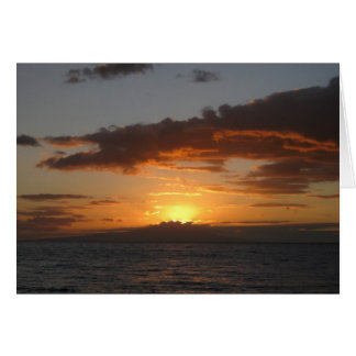 Royal Palms Sunset Cards