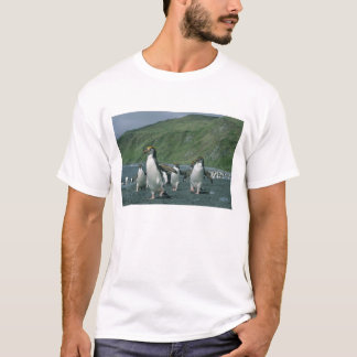 Royal Penguins (Eudyptes schlegelii) endemic, T-Shirt