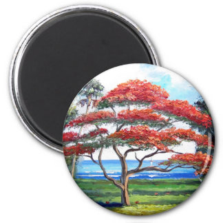 Royal Poinciana Tree Art Magnet