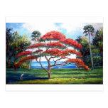 Royal Poinciana Tree Art Post Card