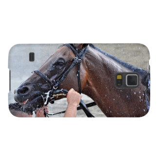 Royal Posse Gets a Cold Hosing Galaxy S5 Case