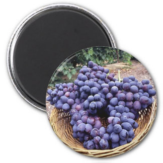 Royal Purple Grapes 2 Inch Round Magnet