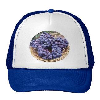 Royal Purple Grapes Trucker Hat