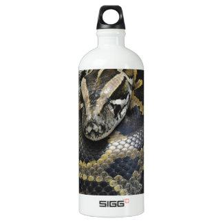 """Royal Python"" Aluminum Water Bottle"