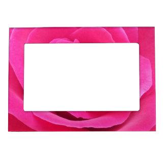 Royal Red Rose Magnetic Frame