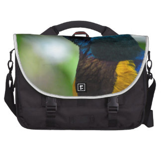 Royal Starling Commuter Bag