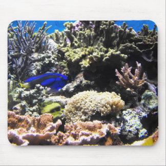 Royal Tang fish amongst the corals Mouse Pad