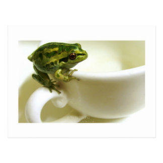 royal teatime post card