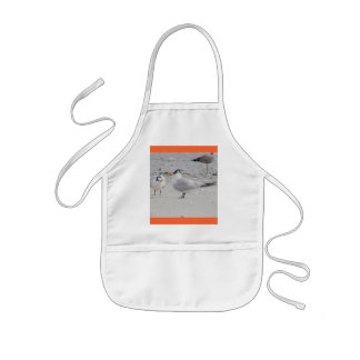 Royal Tern Baby Begging Child's Apron