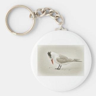 Royal Tern - head down Keychain