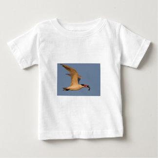 Royal Tern with Fish Shirt