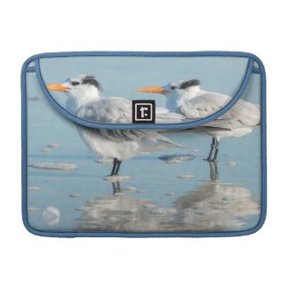 Royal Terns on beach Sleeves For MacBooks