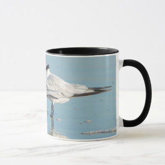 Royal Terns on beach Mug