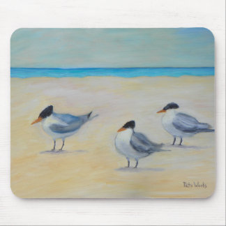 ROYAL TERNS ON ST. AUGUSTINE BEACH Mousepad