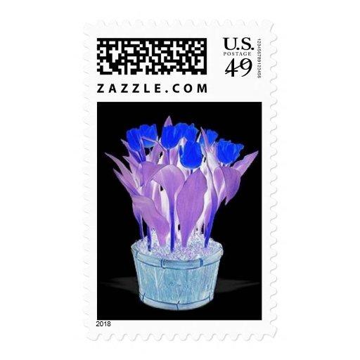 RoyalBlue Stamp