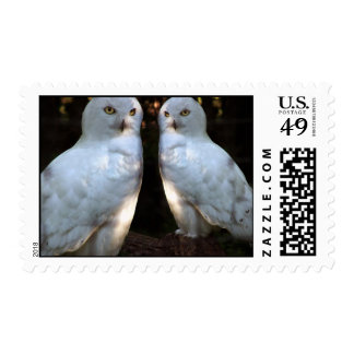 rSEANd Snowy Owl Postage Stamp