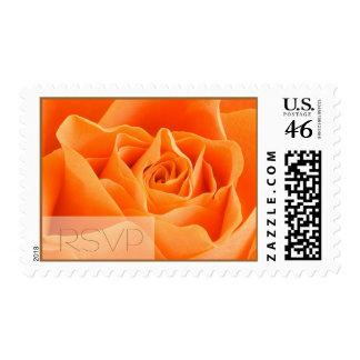 RSVP Autumn Rose Postage Stamp
