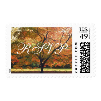 RSVP Autumn Wedding Fall Wedding Invitation Stamps