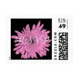 RSVP  Chrysanthemum Postage Stamps